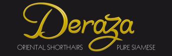Deraza Pure Siamese & Oriental Shorthairs